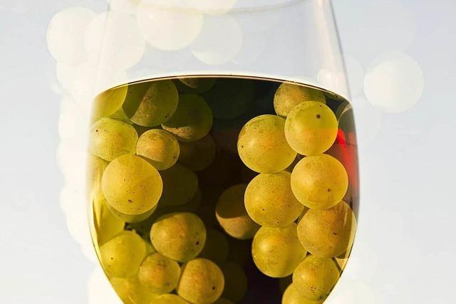 Weinbauverband ist zufrieden mit Qualität und Menge