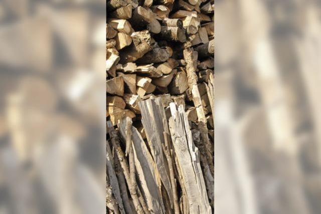 Bürger können Brennholz bestellen