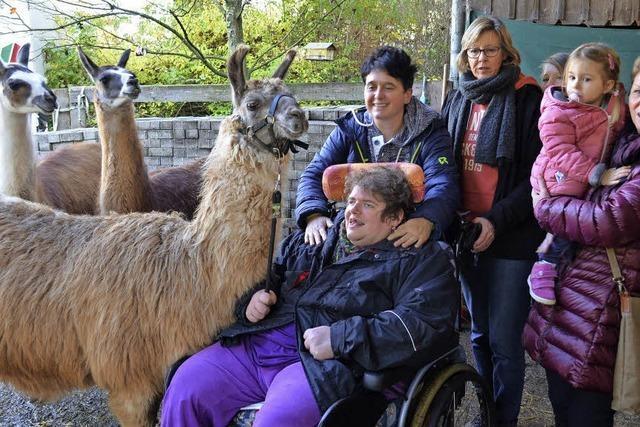 Lamas sorgen für neue Erfahrungen