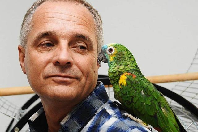 Warum eine Familie aus Hüsingen bei der Suche nach Papagei Paula nicht aufgibt