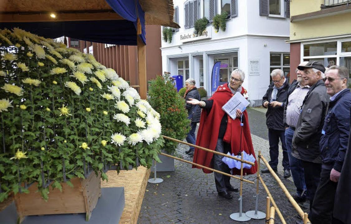 Da staunt der Laie, und selbst der Fac...e Chrysanthema-Besucher in ihren Bann.  | Foto: MARK ALEXANDER