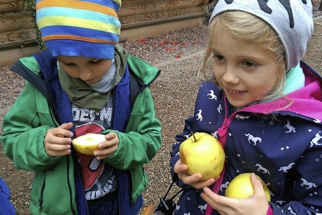 Kinder haben ihren Spaß im Naturzentrum
