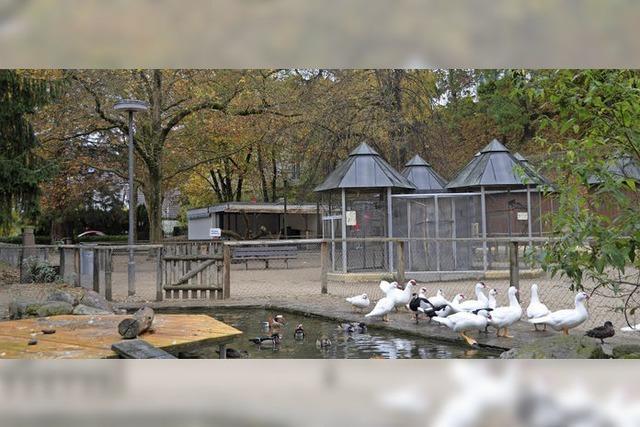 Einsatz für die Tiere im Park