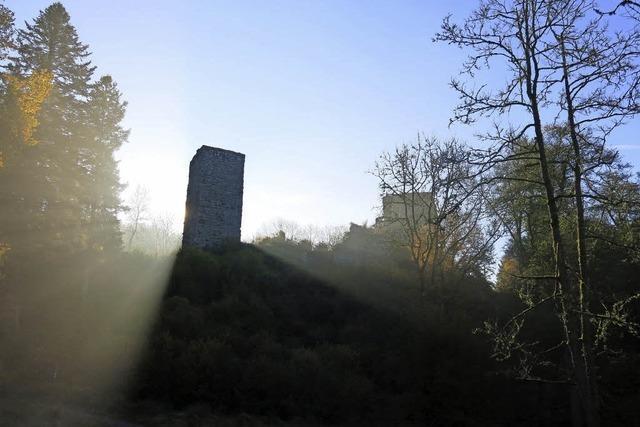 Bürger sorgen sich um die Zukunft der Roggenbacher Schlösser