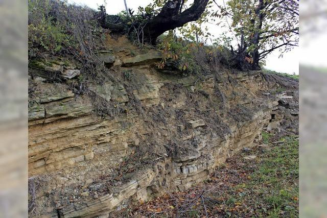 Geologisches Fenster in die Vergangenheit