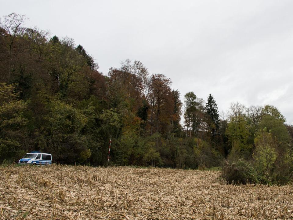 Ein Polizeifahrzeug an einem Waldstück...mittag eine weibliche Leiche gefunden.  | Foto: dpa