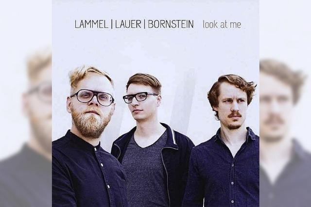 Lammel / Lauer / Bornstein: Wie feine Pinselstriche