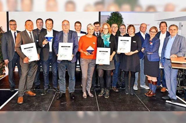 Das sind die Gewinner des BZ-Awards im Cross-Media Wettbewerb