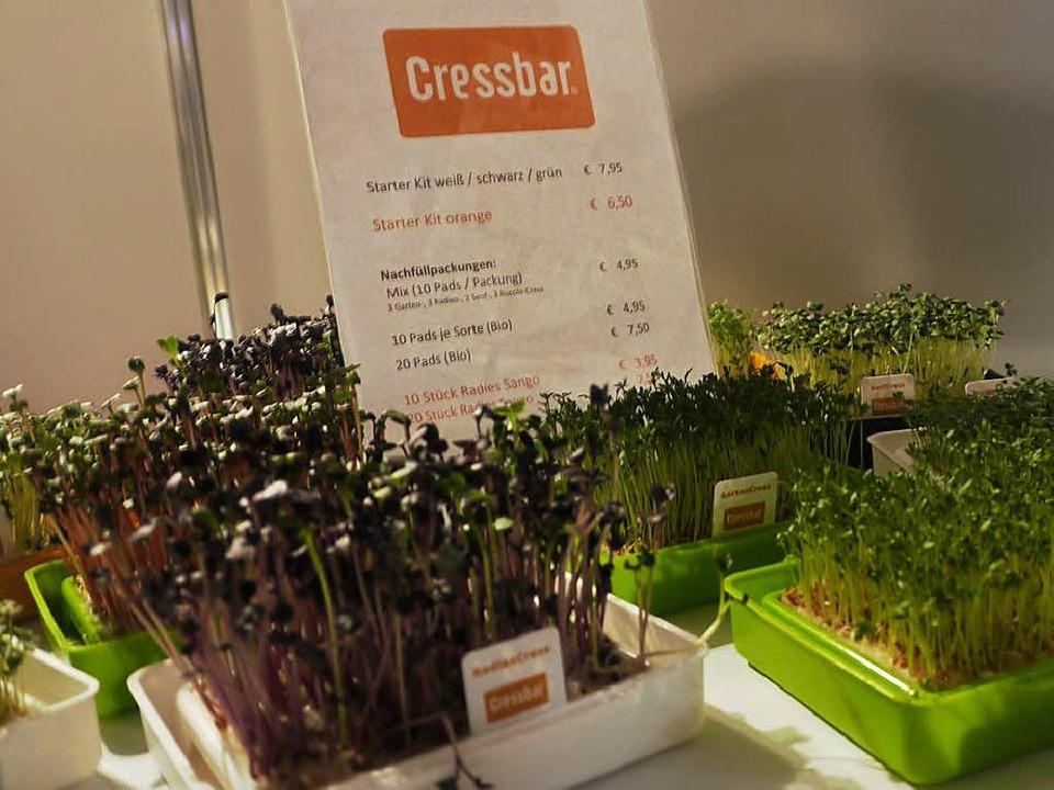 Frisch und grün – Kresse von der Cressbar  | Foto: Robin Wille
