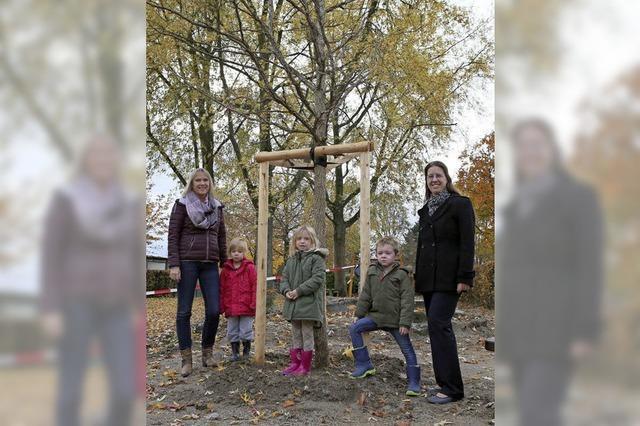 Ein Baum für Don Bosco
