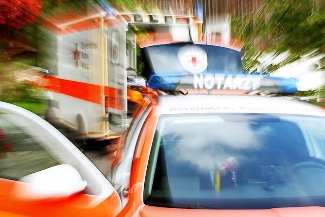 Kind bei Vollbremsung in Lörrach verletzt
