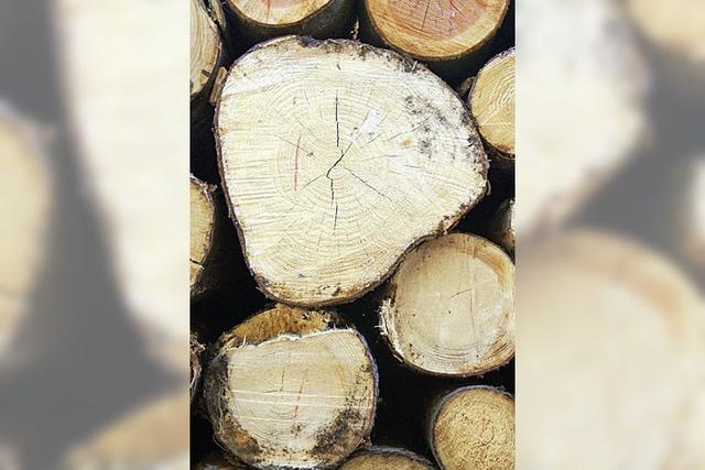 Wald bleibt verlässliche Einnahmequelle