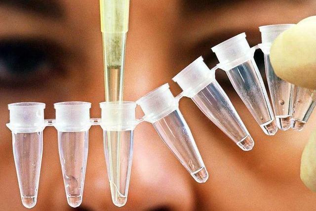 300 Hinweise im Fall Carolin G. – Untersuchungen zur möglichen Täter-DNA noch nicht abgeschlossen