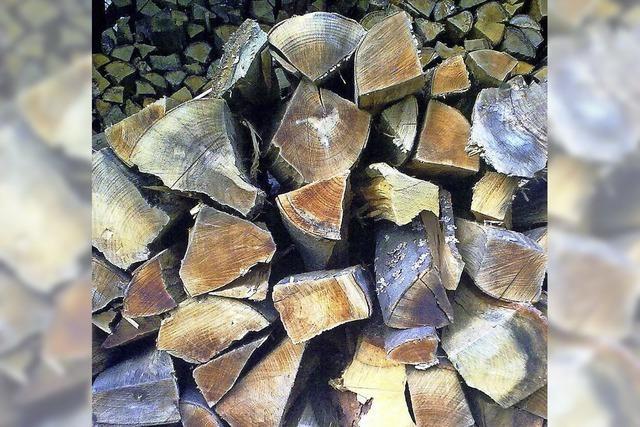 Gemeinderat genehmigt Wald-Bewirtschaftungsplan für 2017