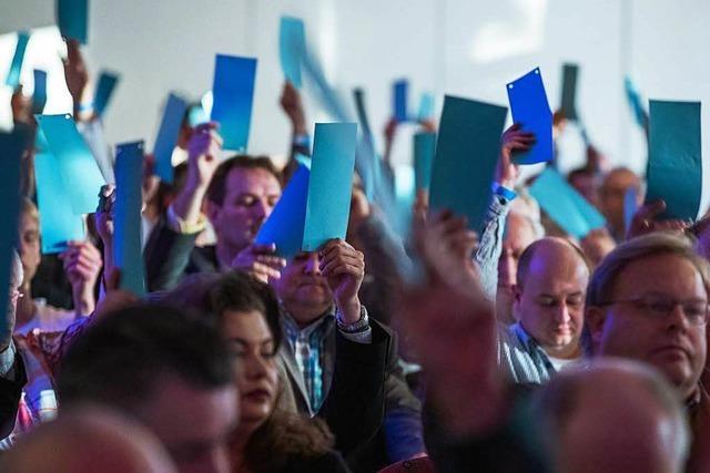 AfD schließt Presse von Landesparteitag in Kehl aus