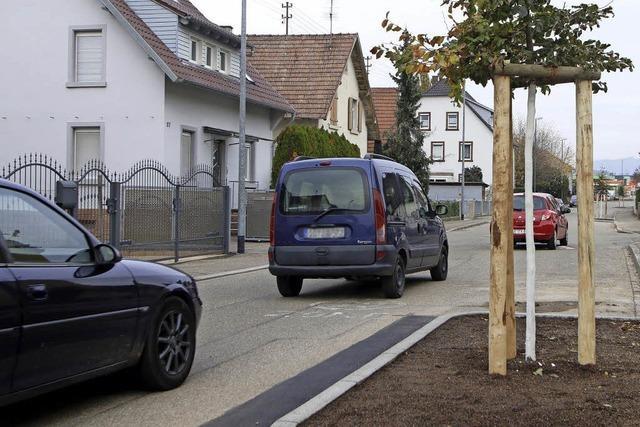 Bäume in der Mietersheimer Hauptstraße
