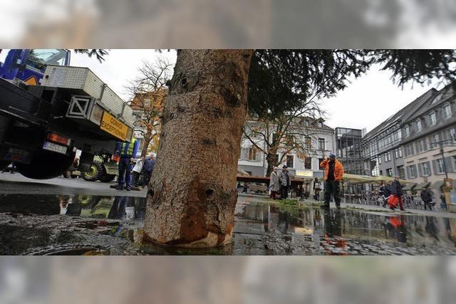 Weihnachtsbaum sorgt für Überschwemmung