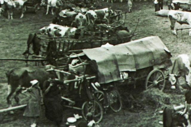 Evakuierung der Rheindörfer