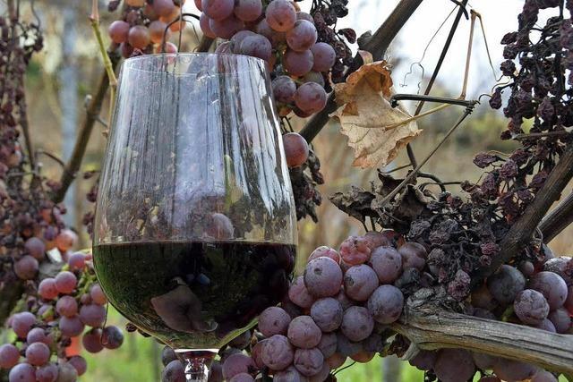 Gemeinderat Heuweiler stimmt dem Beitritt zum Weintourismus Breisgau zu