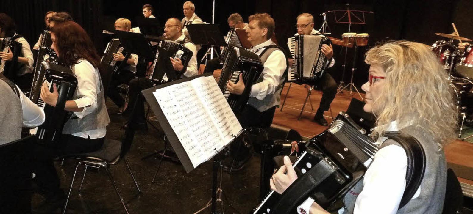 Die Musiker des Handharmonikaspielring...m Konzert Musik für viele Geschmäcker.  | Foto: Heidrun Simoneit