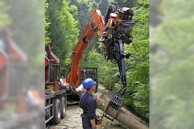 Die Forstwirtschaft im waldreichen Münstertal hat sich verändert