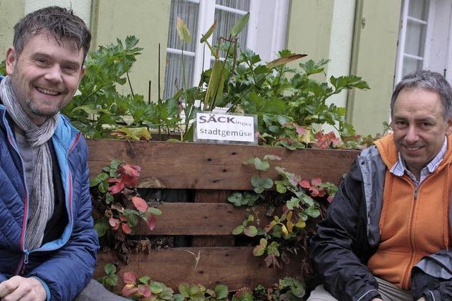 Verein will Gartenoasen in der Stadt schaffen