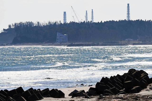Keine größeren Schäden nach Erdbeben in Fukushima