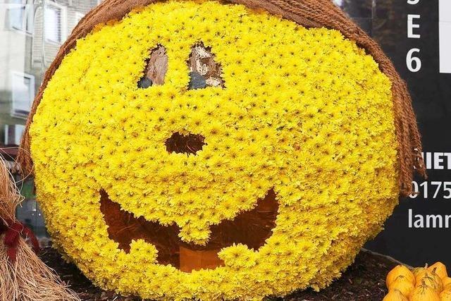 Chrysanthema bekommt von der Stadt Lahr mehr Geld