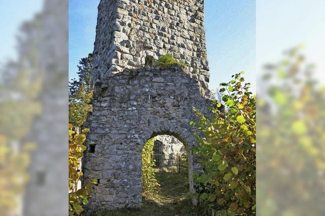 Roggenbacher Schlösser suchen als Relikte ihresgleichen in der Region