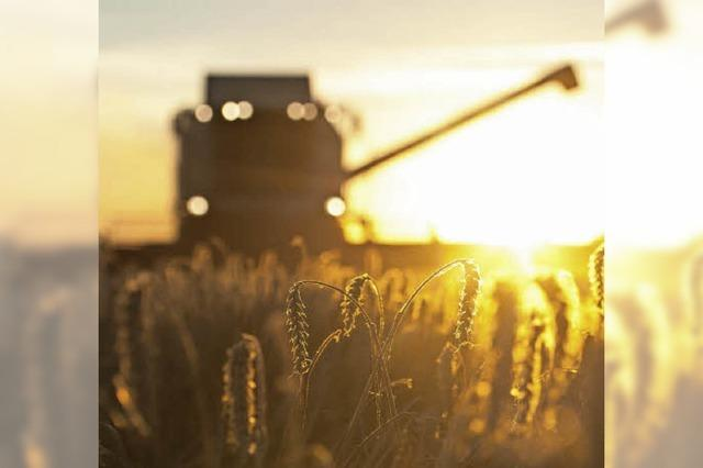 Landwirte stinksauer aufs Land