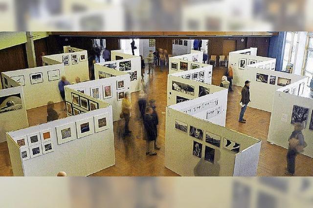 Fotosalon des Fotoclubs Dreisamtal im Kurhaus Kirchzarten