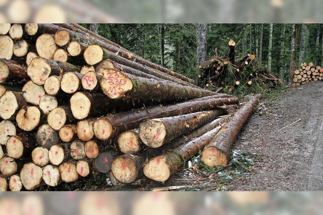 Holzlagerplatz als