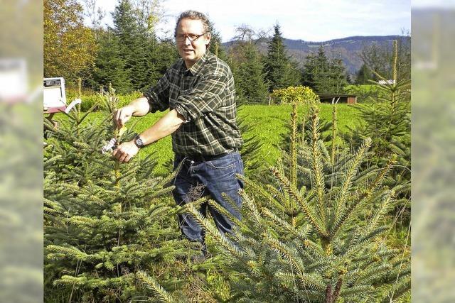 Auf Spendenbasis für BZ-Weihnachtswunsch in Friedenweiler und Neustadt