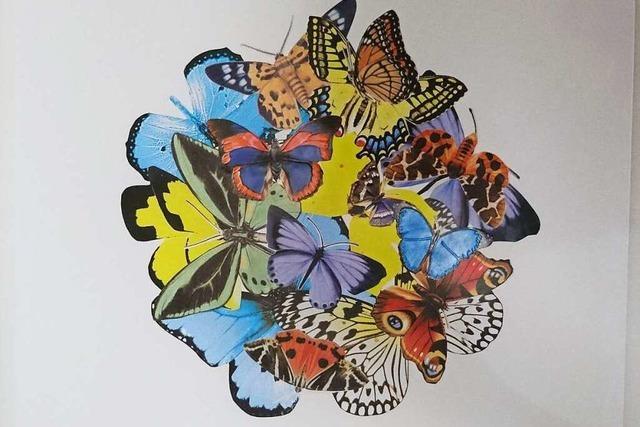 Teilnehmende Künstler (28): Claudia Gabler