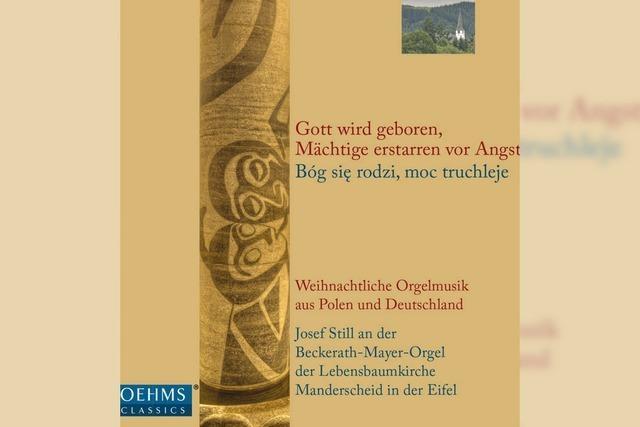 Polnisch-deutsches Orgelfest