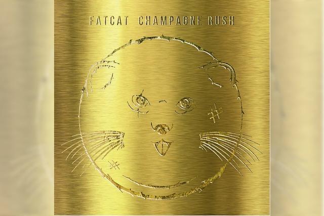 Fatcat: Prickelnder Soulpop