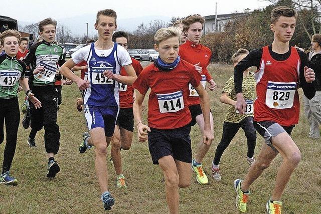 186 Teilnehmer bei Wyhler Crosslauf