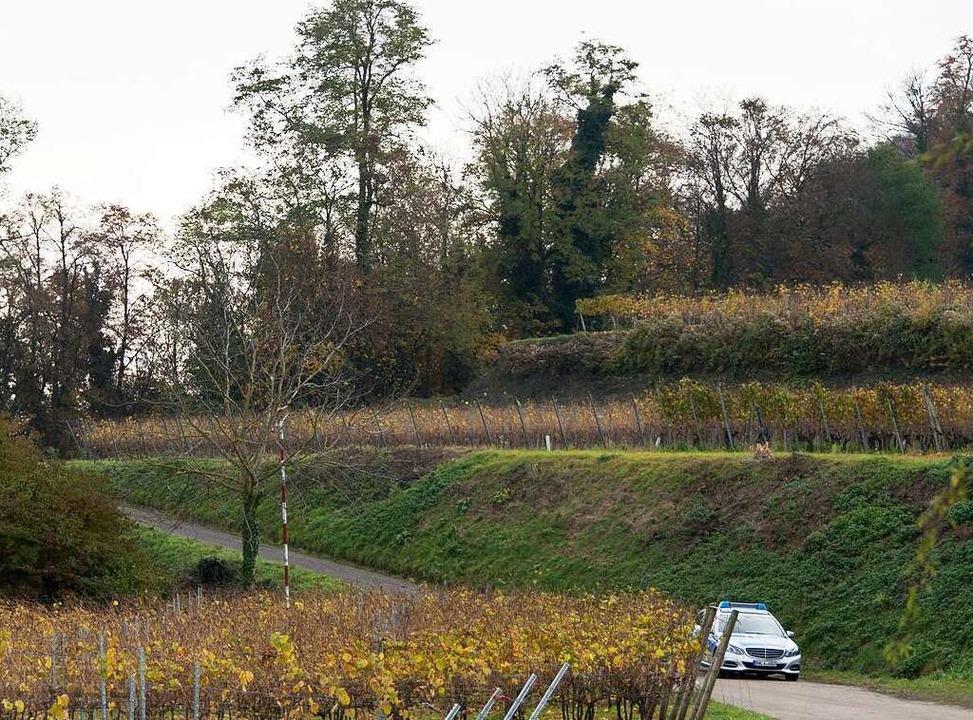 Tagelang suchten Polizisten das Gebiet um Endingen ab.  | Foto: dpa