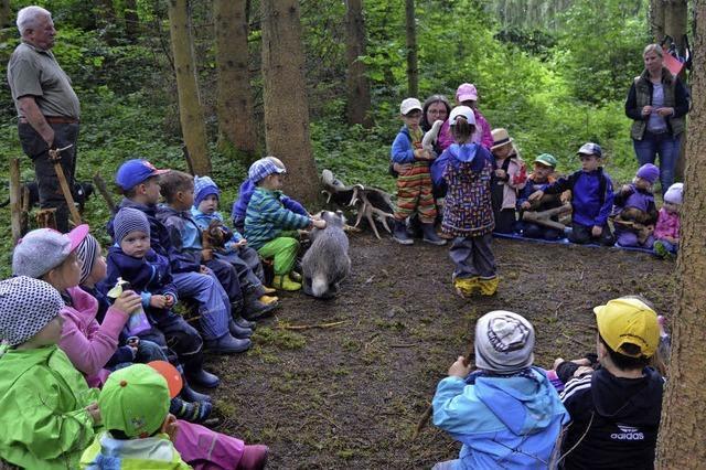 Wald und Wiesen wieder neu entdecken