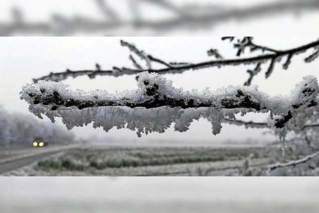 Frostiges Grau in Grau