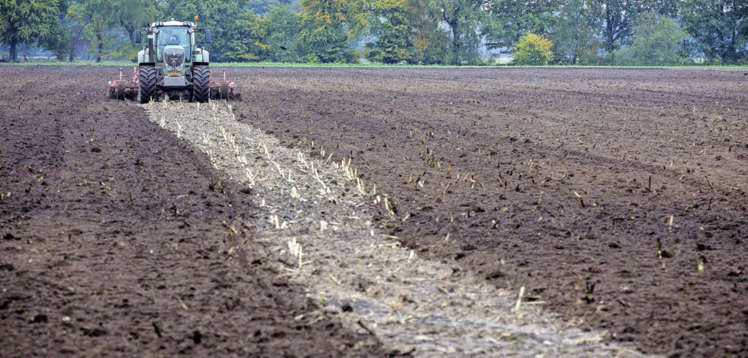 Bauern brauchen Äcker – aber man...en darin vor allem künftiges Bauland.   | Foto: dpa