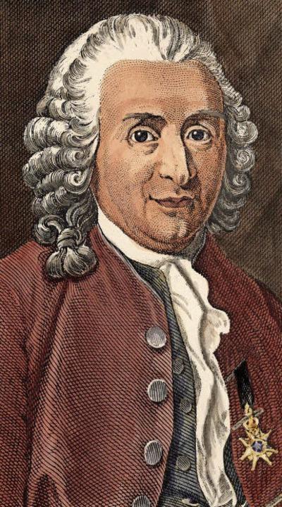 Bekannter Biologe des Barock: Carl von Linné   | Foto: akg-images