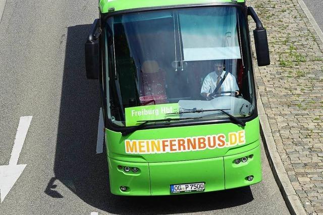 Busbahnhof Lörrach: Zwei Frauen sind illegal eingereist