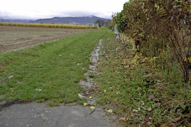 Grasweg wird zum Feldweg