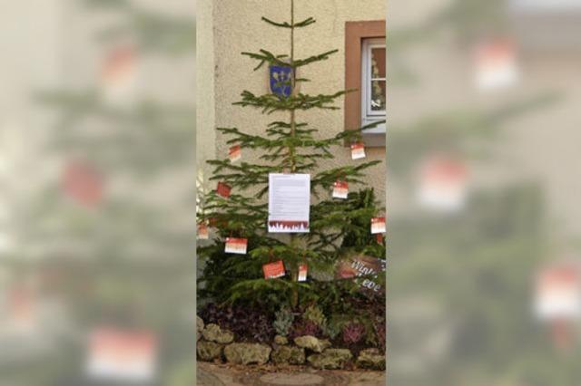 Wunschbaum zu Weihnachten kommt gut an
