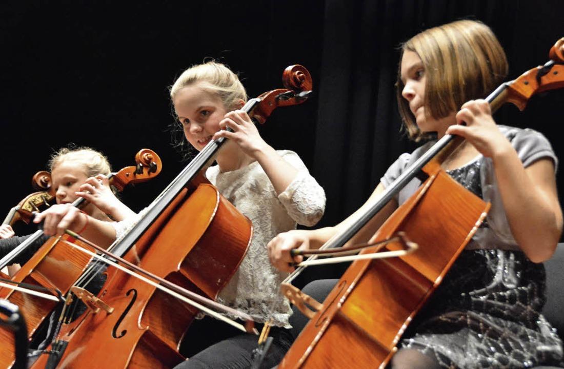 Cellistinnen des Ensembles Saitenzauber    Foto: Barbara Ruda