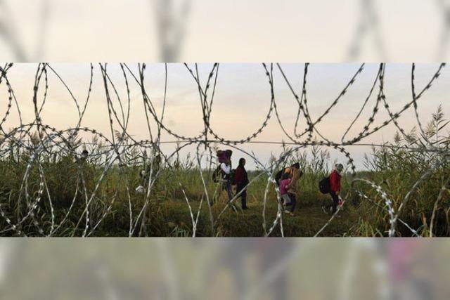 Am liebsten wären der EU Flüchtlingscamps in Afrika