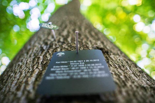 Ein Meilenstein für den geplanten Bestattungswald in Neuried