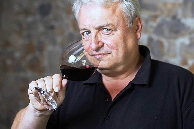Wie gut sind die Bewertungen der Weinführer für Baden?
