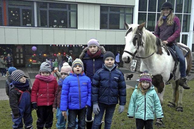 Mit Ponys Advent feiern